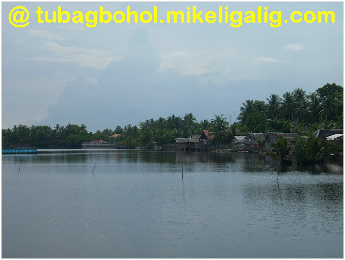 go-to-travel-trip-tour-anda-bohol-philippines-picture136 - Katunggan - Anda - Bohol