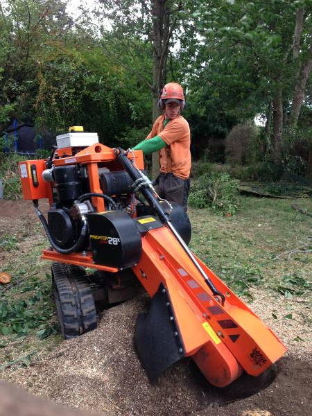 Medium Stump Grinder