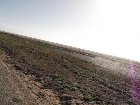 Marrocos e Mauritãnia a Queimar Pneu e Gasolina - Página 9 DSCF1044