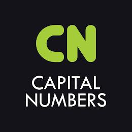 Capital Numbers Infotech Pvt Ltd logo