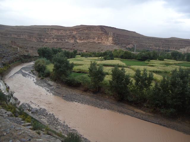 Marrocos 2011 - Página 2 DSC03456