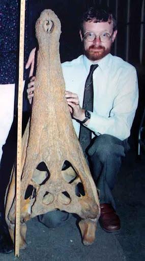 Questões e Fatos sobre Crocodilianos gigantes: Transferência de debate da comunidade Conflitos Selvagens.  - Página 2 Tomistoma