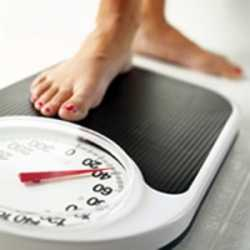 the main cause of obesity in humans Obesity can affect all types of pet, and the main cause is from eating too much or not exercising enough, although some diseases can cause obesity.
