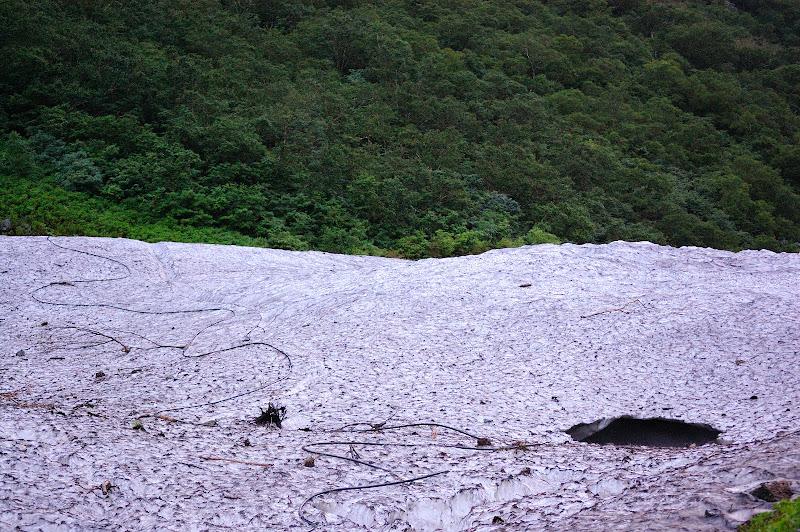 雪渓の写真