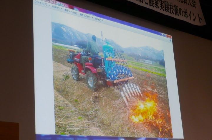 手製のガスパーナーで雑草の種を焼く
