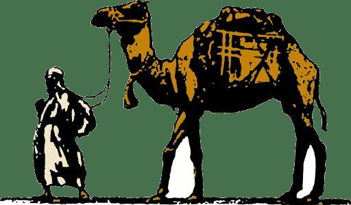 الهجرة النبوية فى عيون الشعراء