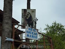 Naar het berenpark