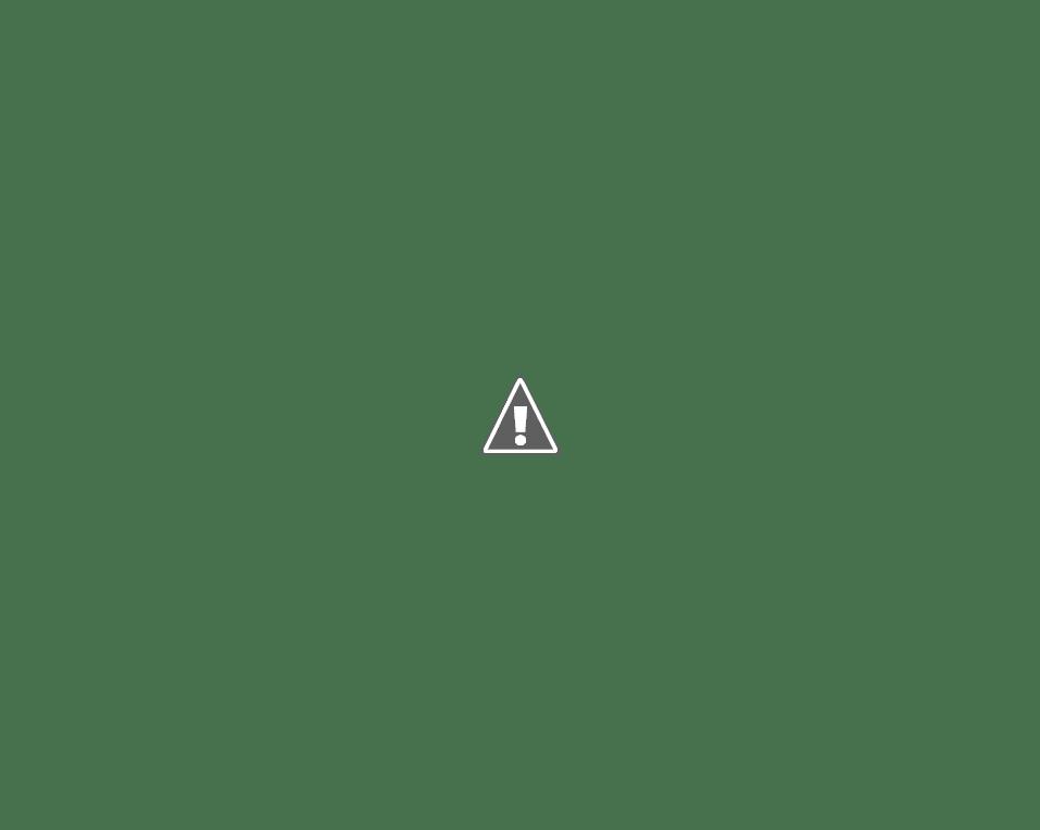 VIDEO Todos los Touchdowns de la Semana 5 de la NFL