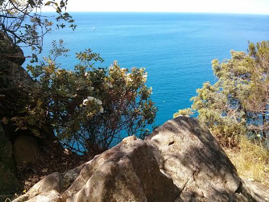 trekking Levanto e Cinque terre