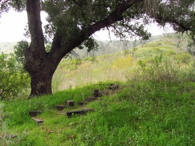 old steps on the hillside