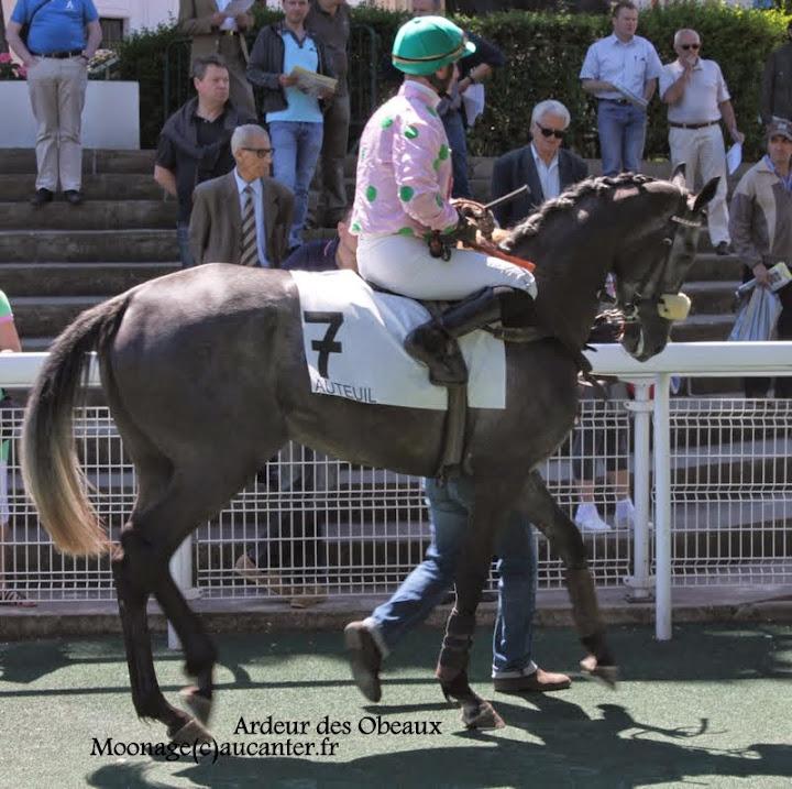 Photos Auteuil le 21-06-2014 IMG_2024