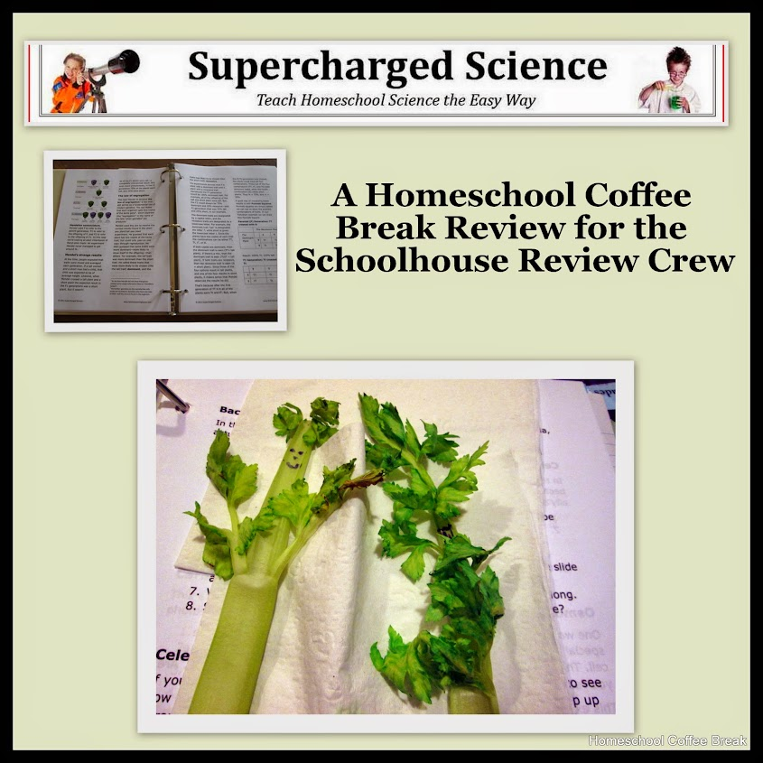 Supercharged Science review