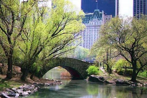Central Park Central_park_river_bridge