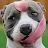 Tobias Hey avatar image