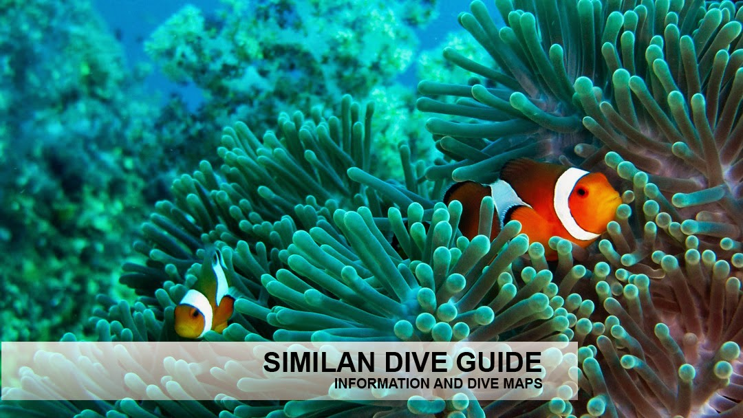 Similan islands information