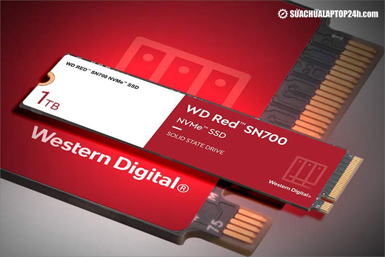 Ổ cứng SSD WD Red SN700 M.2 NVMe