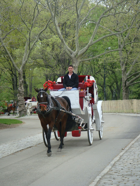 Carrosses, People in Central Park, New York, Manhattan, elisaorigami, travel, blogger, voyages, lifestyle