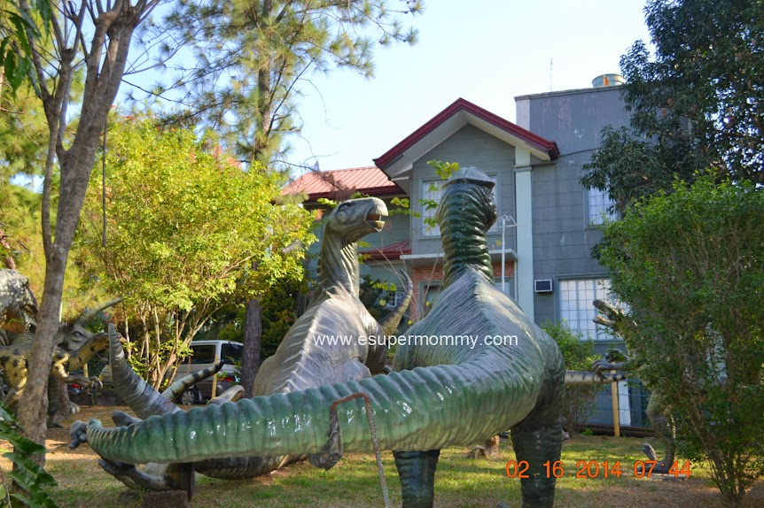 Sitio Lucia Resort Jurassic Theme