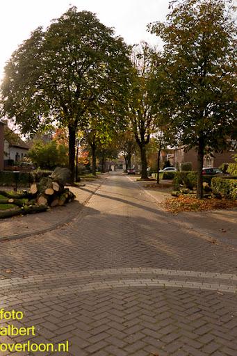 Bomen gekapt Museumlaan in overloon 20-10-2014 (43).jpg