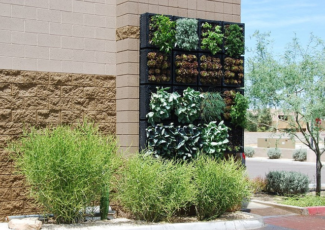 Keeping Up With The Joneses: Vertical Gardens
