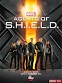 6d460001175bf9f2aec5a387cbcf8f65+%281%29 Download Marvels Agents of S.H.I.E.L.D. 1ª Temporada AVI + RMVB Legendado | 720p