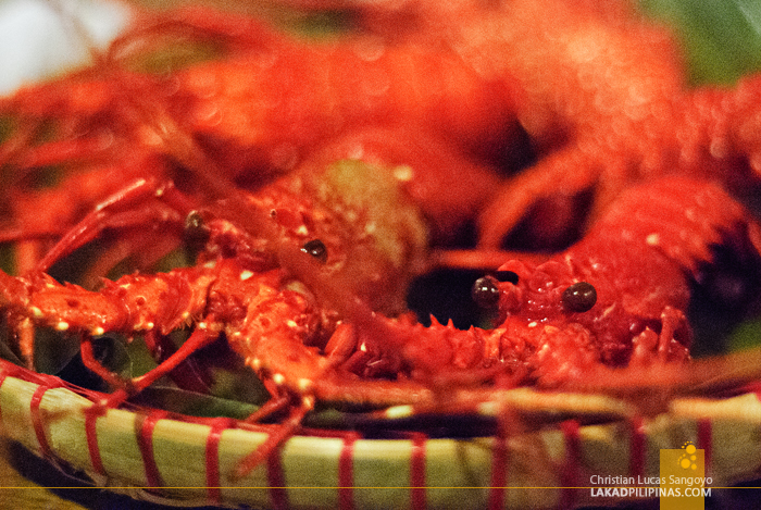 Lobsters at Sorsogon's Siama Hotel