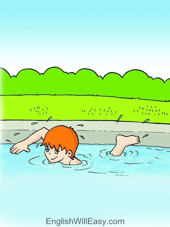 Picture Card For Kids- Verbs- swim