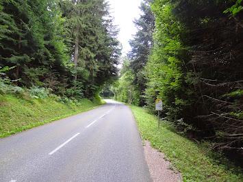 Début de la montée dans la forêt
