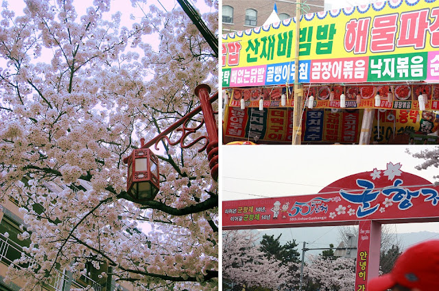 Cherry blossoms in Korea - around Jinhae