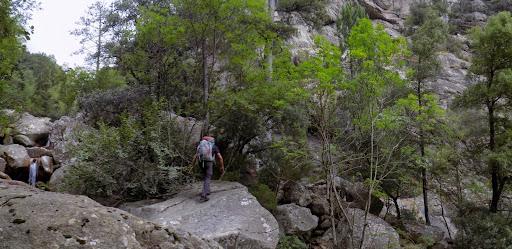 Remontée du Pulischellu en amont de la Grande Cascade (photo Olivier Hespel)