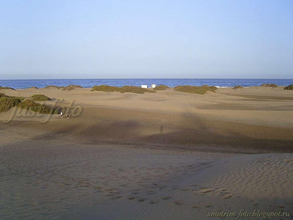 Дюны на Атлантическом океане фото