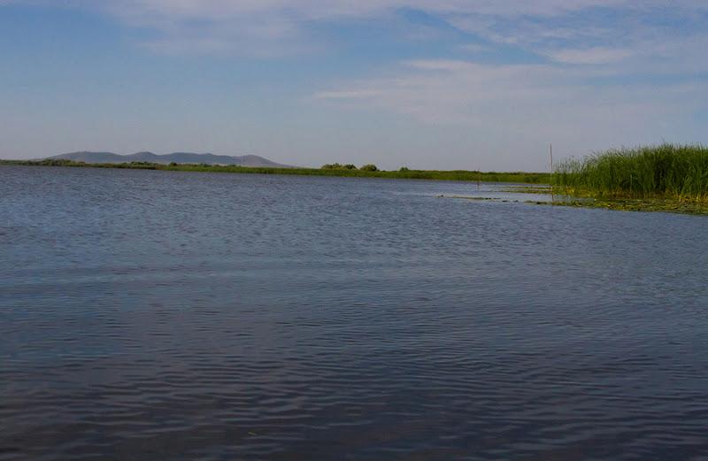 lac Delta Dunării apă caiac stuf Beștepe