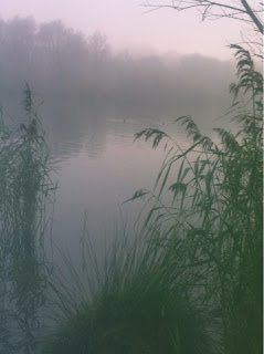 Fog at Whitlingham Broad, Norwich