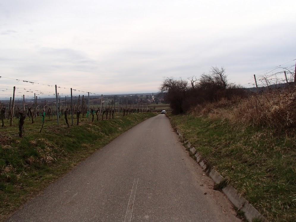 Descente de la cave de Wuenheim