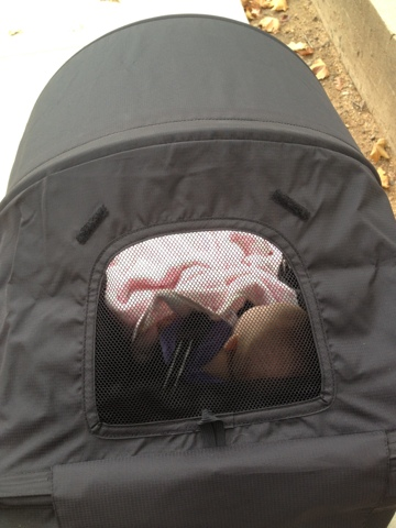 Vivian in the stroller