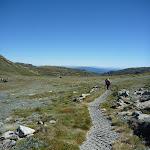Walking along the Main Range Track (267134)