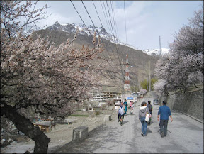 April in Hunza Valley, Gilgit-Baltistan, Pakistan.  Photo by: Skybee