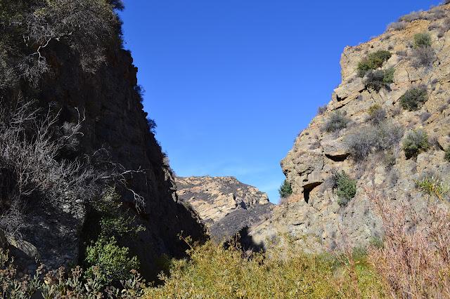 Cienaga Canyon