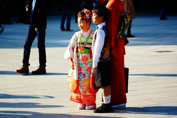 shichi go san festival in Meiji Jingu - Harajuku - Tokyo