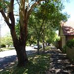 Walking along the footpath beside Shirley Rd (386687)