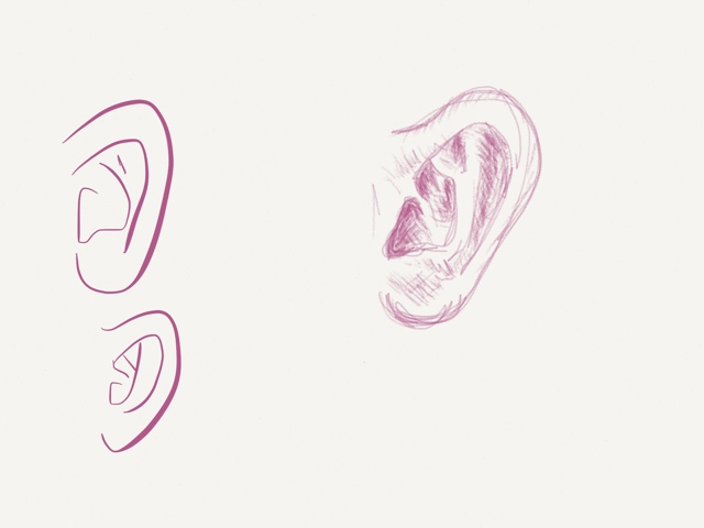 sketch of an ear