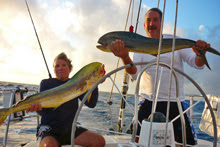 J/Fish- monster dolphin/ mahi-mahi caught off the stern!