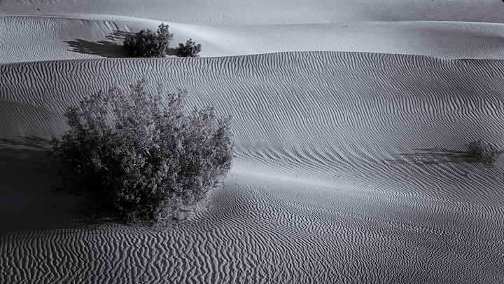 black and white desert sands