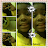 Mhea Davis avatar image