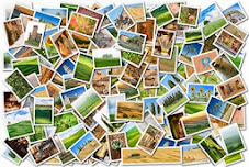 Cómo aplicar SEO básico a las imágenes