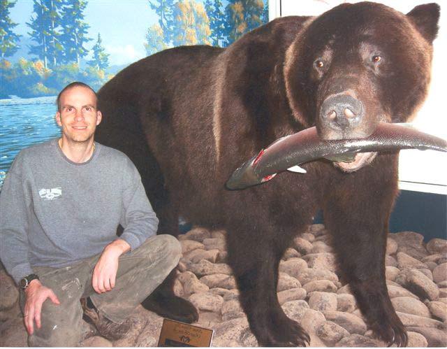 Urso pardo vs Urso polar HoustonGrizz