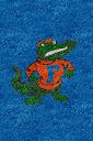 Florida%252520Gators%252520Vintage.jpg