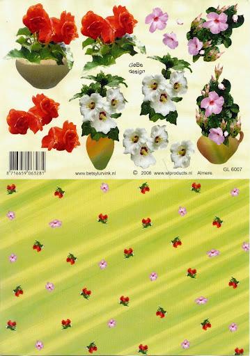 GL 6007 Betsy Lurvink-bloemen+achtergrond.jpg