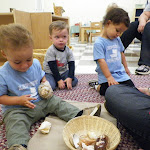 LePort Montessori Preschool Toddler Program Irvine Lake - kids playing with shells