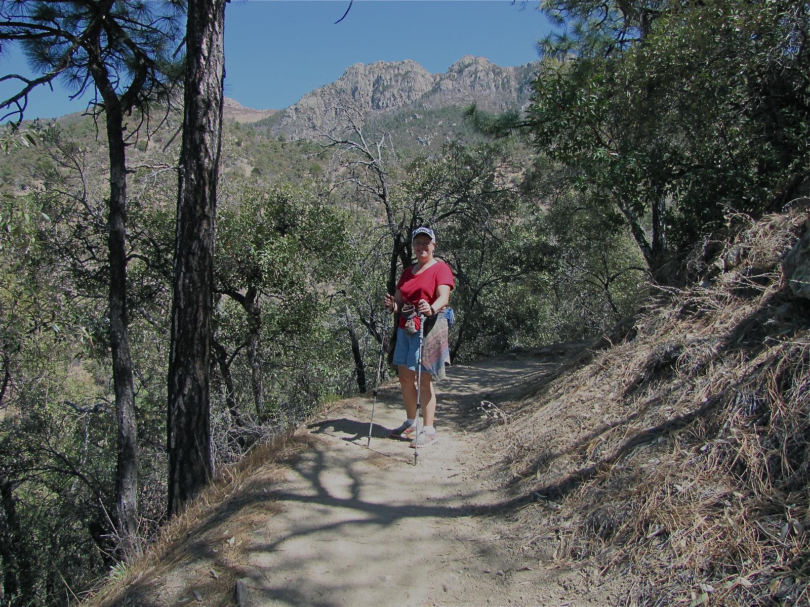 There Are Exceptional And Varied Hiking Trails At The Canyon...also Three  Places Of Lodging  The Santa Rita Lodge, Madera Kubo B U0026 B, And Chuparosa  Inn. ...